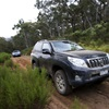 ExplorOz test drives the new Prado range