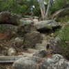 Bushwalks on NSW South Coast