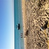 Glorious days at Ningaloo
