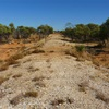 2011   DIAMANTINA NATIONAL PARK   QLD