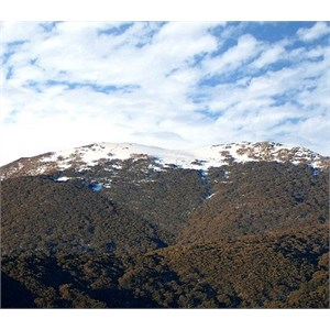 Mount Stirling