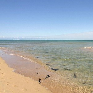Ningaloo Reef Adventure