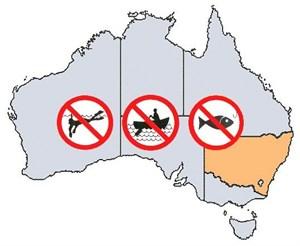 NSW Fishing Rules