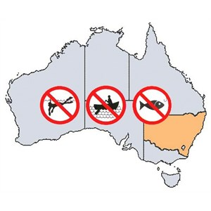 NSW Fishing Rules