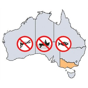 VIC Fishing Rules