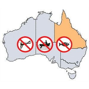 QLD Fishing Rules