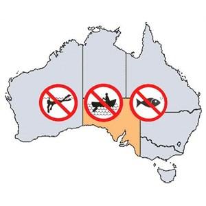 SA Fishing Rules