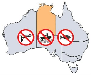 NT Fishing Rules