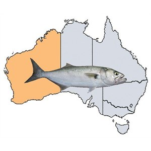 Fishing Spots in WA