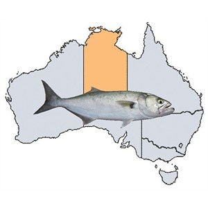 Fishing Spots in NT
