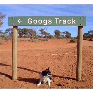 Googs Track