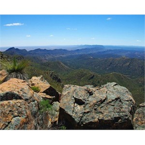 St Mary Peak and Wilpena Pound Walk
