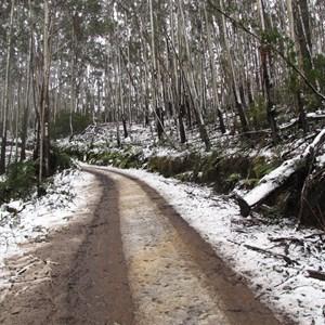 Dampier Mountain Fire Trail & Bendethera Access