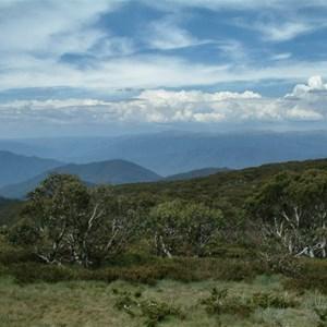 Mount Pinnibar