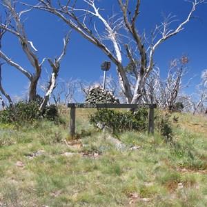 Mount Gibbo