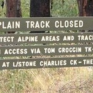 Davies Plain Track