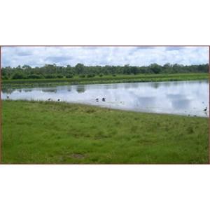 Mamukala Wetlands and Bird Hide
