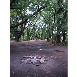 Duffys & HorsePaddock Camps