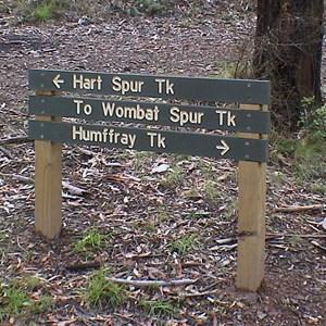 Hart Spur Tk & Humffray Tk & Wombat Spur Tk