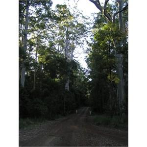 Richmond Range