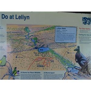 Leliyn (Upper Falls)