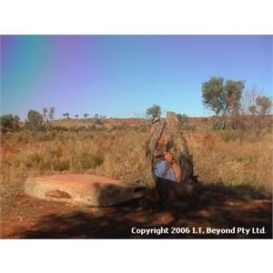 CSR Well 15 (Mandjangga)