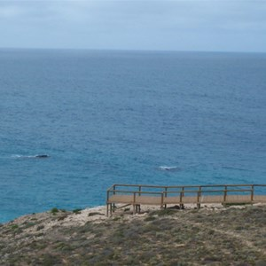 Head Of Great Australian Bight