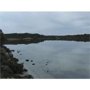 Yangie Bay