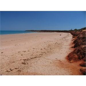 Riddell Beach