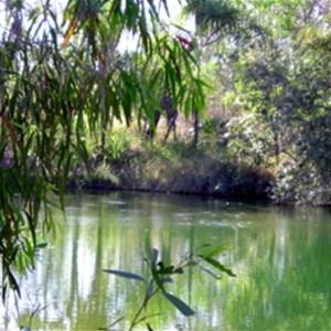 Tjuwaliyn (Douglas) Hot Springs Nature Park