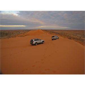 Simpson Desert National Park