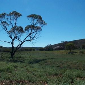 Gawler Ranges Conservation Reserve
