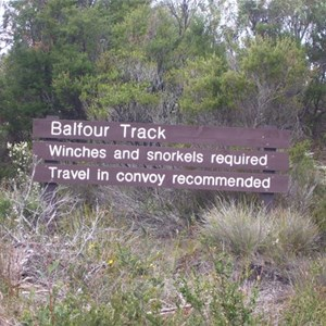 Balfour Track Forest Reserve