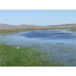 Parrys Lagoons Nature Reserve