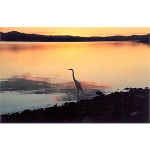 Awoonga Reservoir