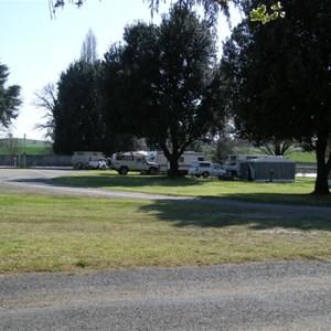 Molong Caravan Park