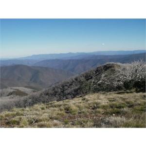 Mount Blue Rag