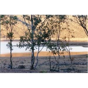 Eungella Dam