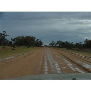 Wilcannia to Menindee Road