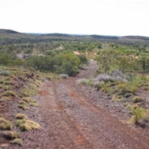 Puntawarri Track