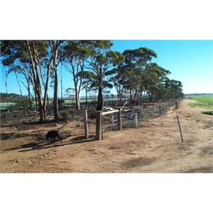 No. 1 Rabbit Proof Fence