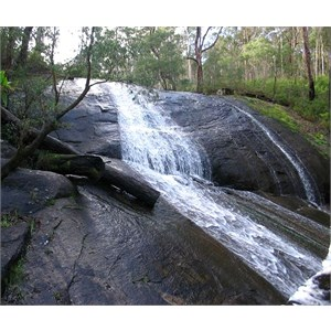 Lane Poole Falls
