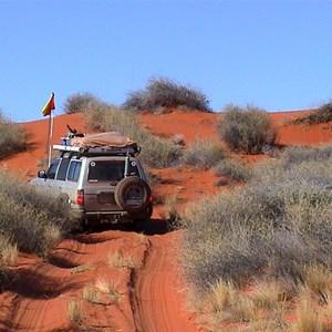 Spinifex Dune, QAA Line