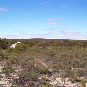 Ngarkat Conservation Park