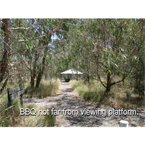 Wannon Falls Reserve