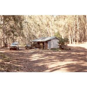 Hollow Hut