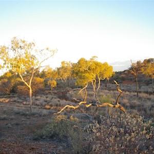 Hunt Oil Camp (Abandoned)
