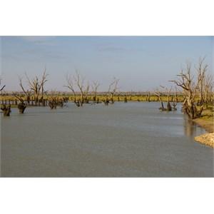 Water Discharging Dam