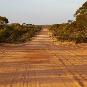 Timber Reserve