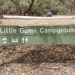 Little Gums Campground & Ron's Camp